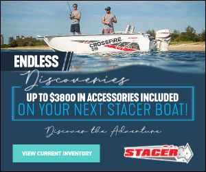 Stacer's Endless Discoveries